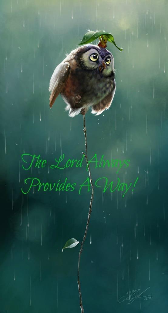 god provides a way